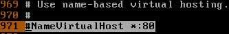 virtual host tag