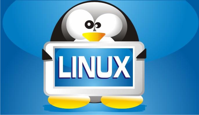 creare siti web con linux