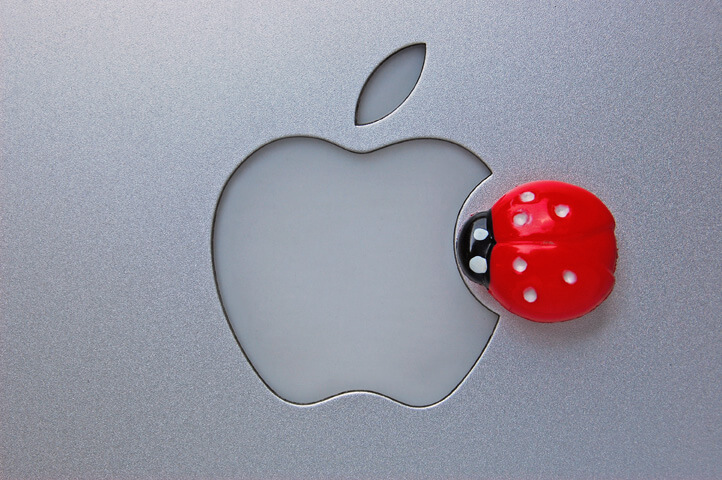 apple-mac-bug