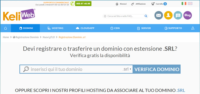 domini-estensione-srl-web-hosting