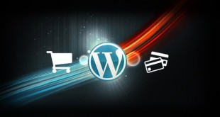 wordpress hosting ecommerce