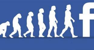 facebook algoritmo novità