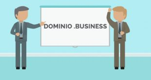 domini hosting business