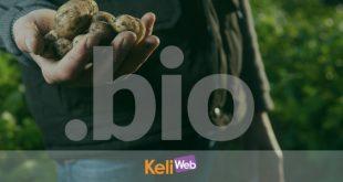 dominio web .bio nuovi gtld