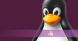 perche scegliere hosting linux per il tuo sito