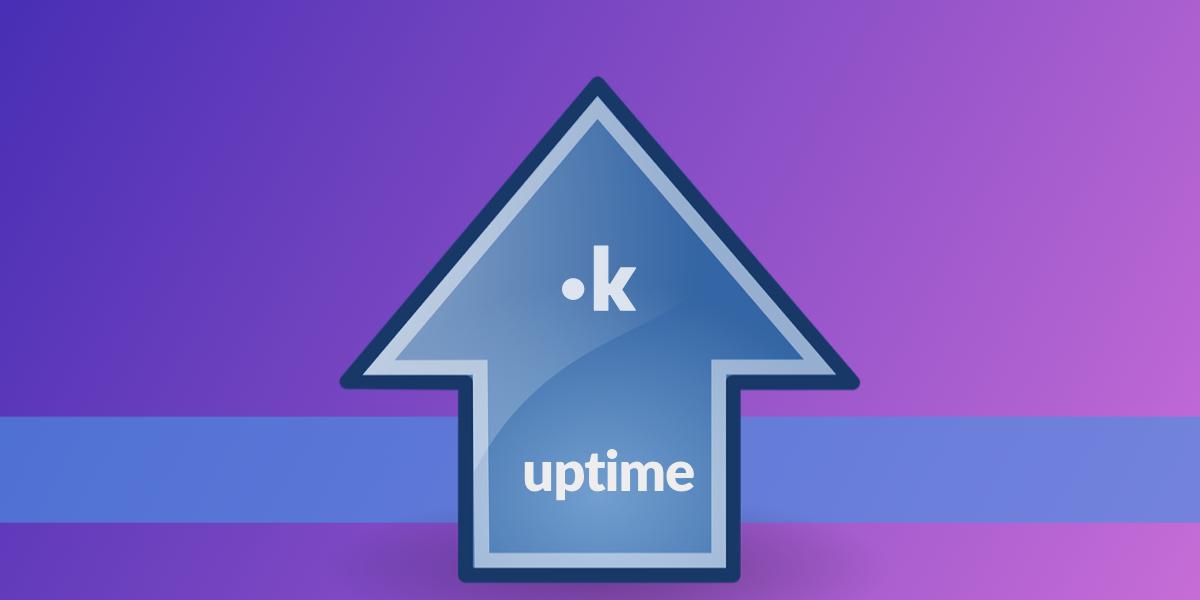 server hosting uptime