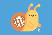 perché wordpress è lento