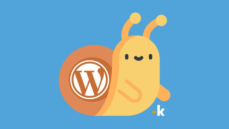 perché wordpress è lento
