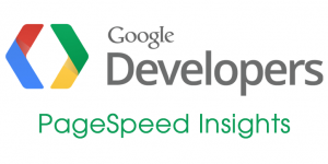 google-pagespeed-insights-1.png