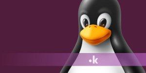 perche-scegliere-hosting-linux-per-il-tuo-sito.jpg